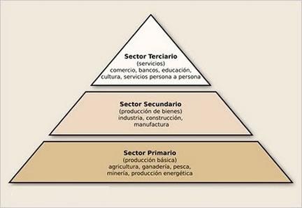 La actividad económica está dividida en sectores económicos