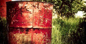 Corrupción verde: los delitos ambientales