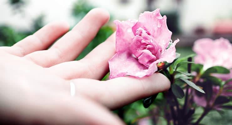 Cómo disminuir factores de riesgo de cáncer cérvico uterino