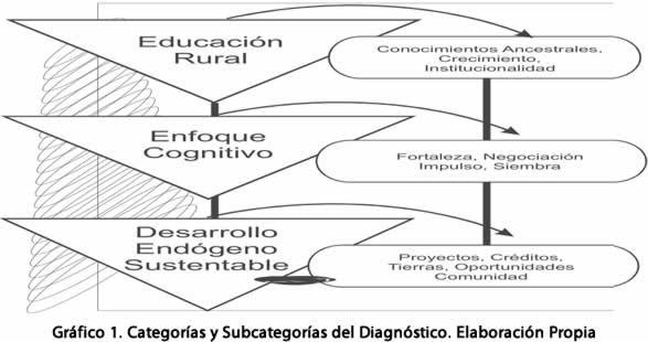 grafico1-categorias-diagnostico