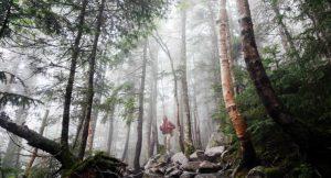 Medio ambiente y salud: factores ambientales que influyen en las condiciones de vida