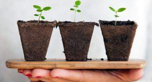 Retos para un futuro sostenible