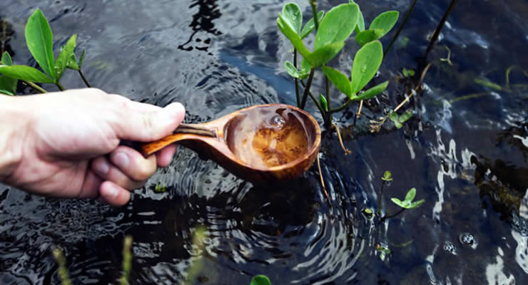 Tips fáciles y divertidos para cuidar el agua: ¿Cómo ahorrar agua?